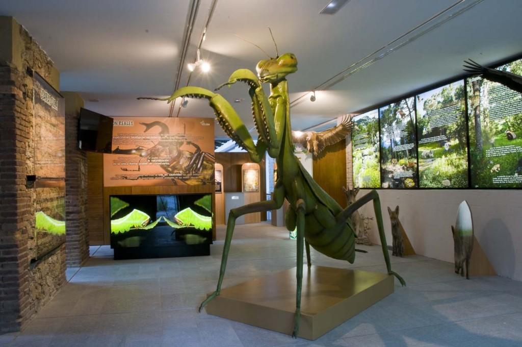 Centro de Naturaleza Insectpark